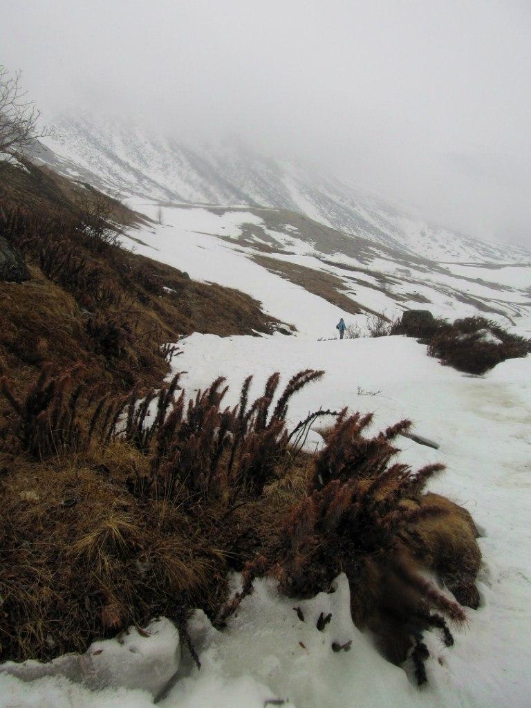 Верховья Белого Иркута, май 2013