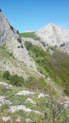 Krym1900095
