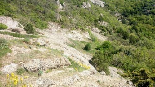 Krym1900114