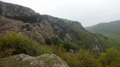 Krym1900159